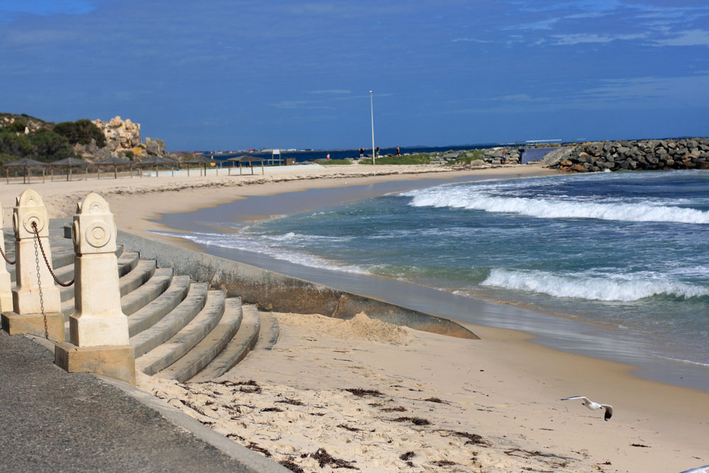 Cottesloe beach 4