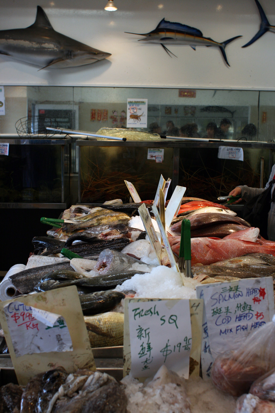 Fish-Monger-Northbridge
