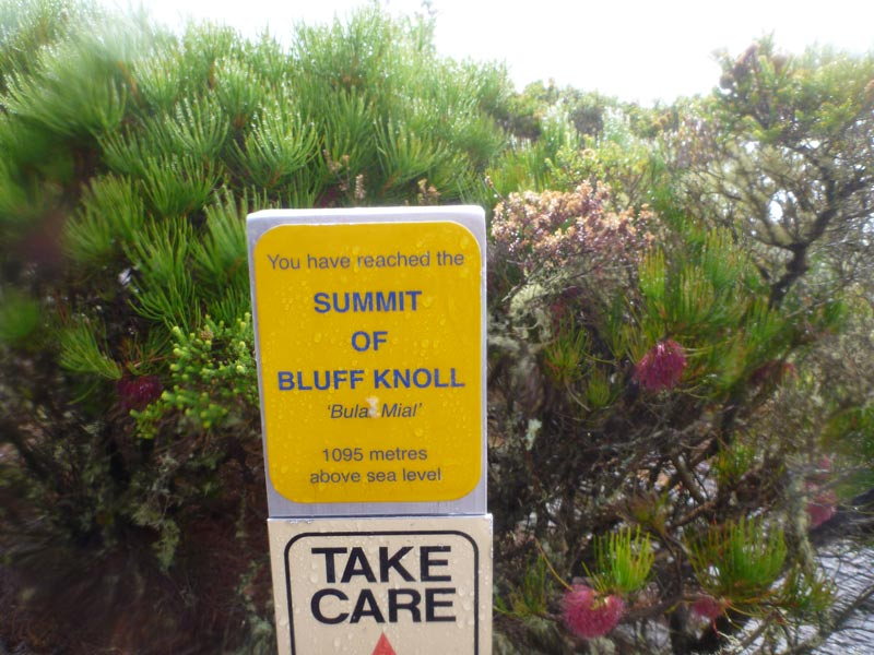 Summit-of-Bluff-Knoll